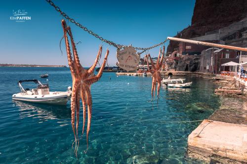 Greek Mediterranean Cuisine: fresh seafood
