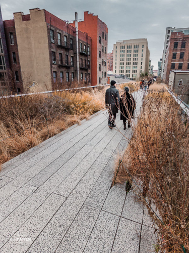 USA Travel: Walk the High Line in New York City