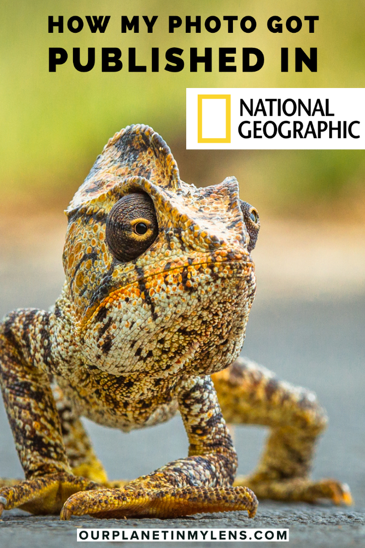 How my photo got published in National Geographic Magazine