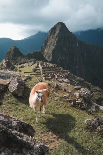 South America Travel: Machu Picchu Peru