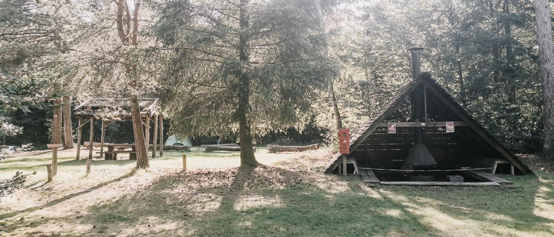 De groenste camping in de Maasduinen: de Cokse Heide