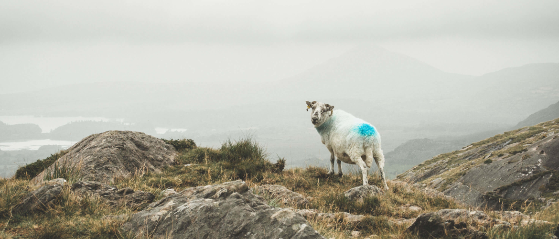 Hoe koop je duurzame outdoorkleding?