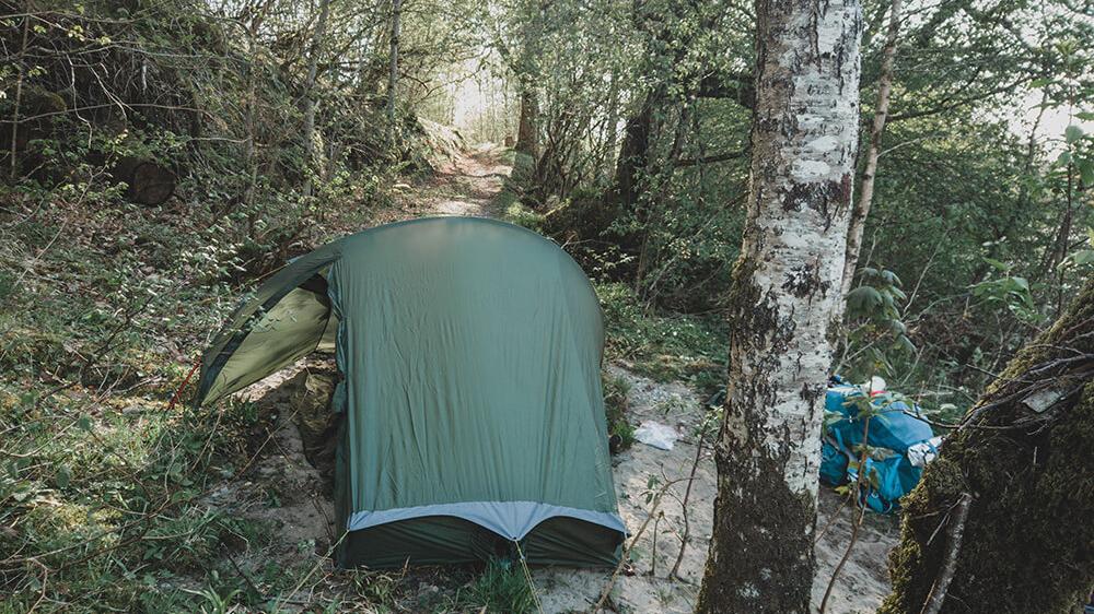 wildkamperen-engeland