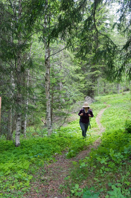 in-je-eentje-wandelen-in-zweden