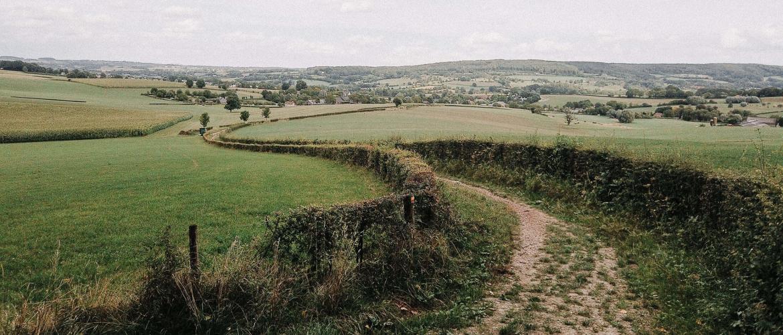 Het Krijtlandpad: 92.5 kilometer wandelen in Limburg