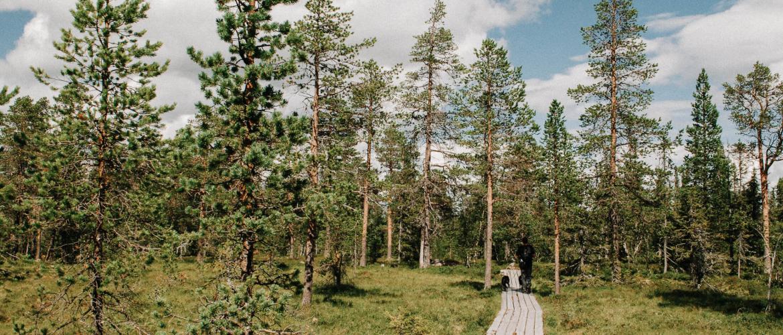De mooiste lange afstand wandelroutes in Zweden