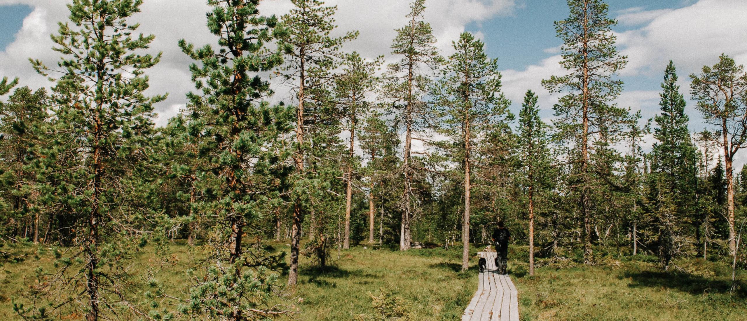 Lange Afstand Wandelroutes in Zweden