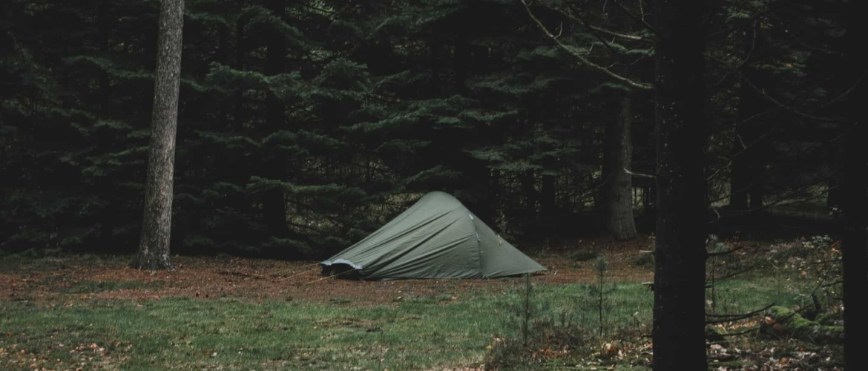 Natuurkampeerterrein Borger: het hele jaar door kamperen in het bos