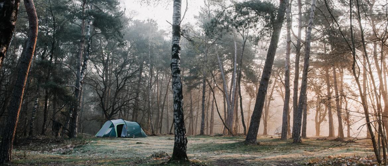 Natuurkampeerterrein Quadenoord: kamperen op de Veluwe