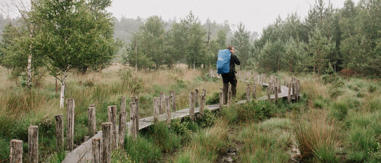 Wandelen over het plankenpad op het Dwingelderveld bij Spier