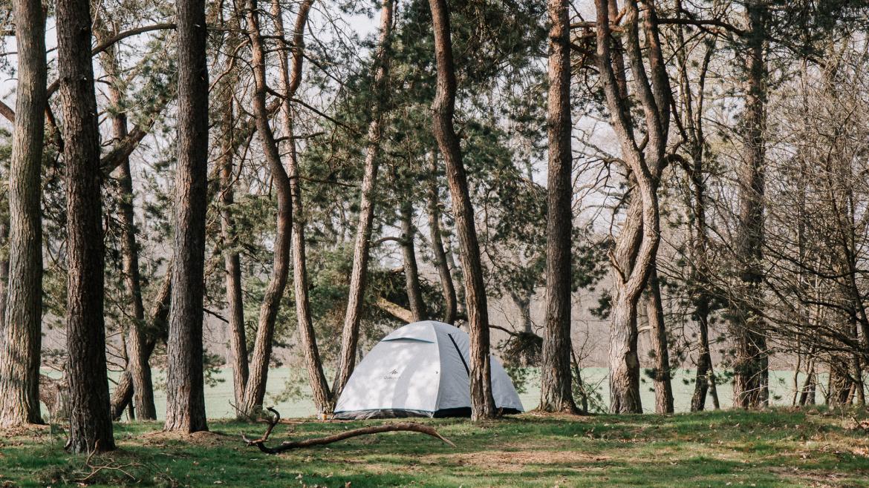 renkum-camping-quadenoord