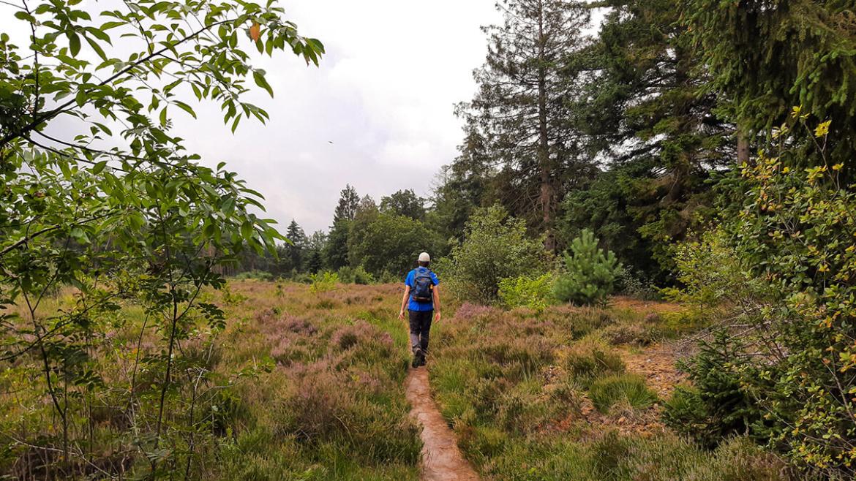 roots-langste-natuurpad-wandelen