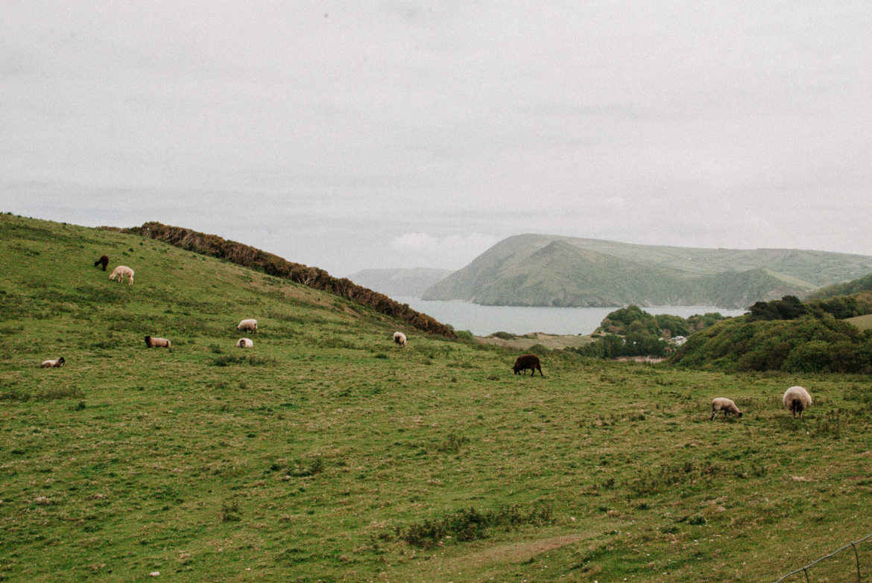 south-west-coast-path-zuid-engeland