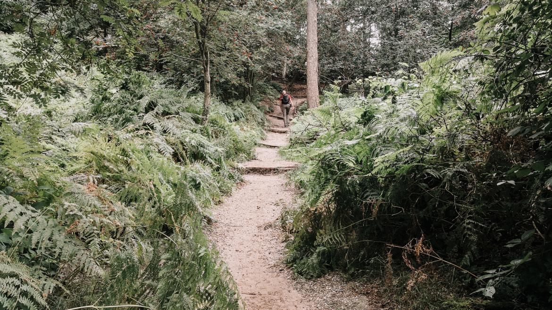 wandelen-op-de-duivelsberg
