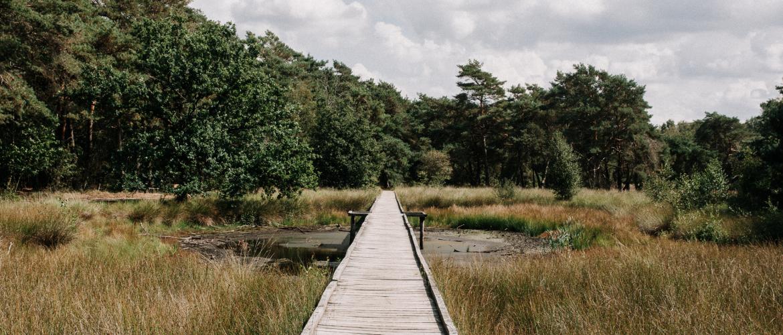 Wandelroutes in Nederland: een overzicht