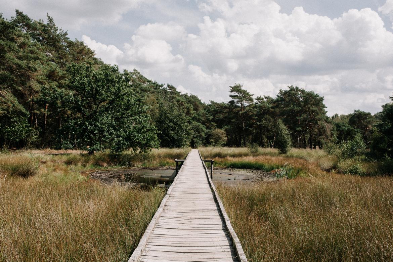 wandelroutes-in-nederland