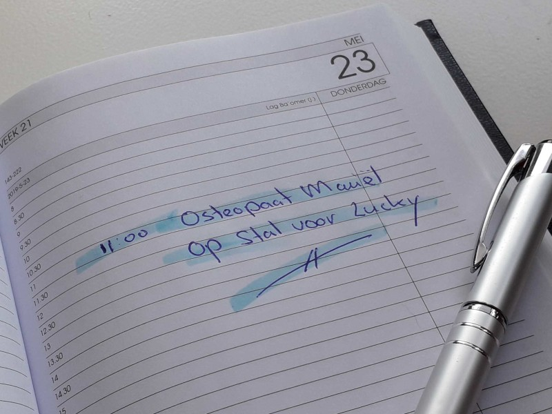 Agenda met osteopathieafspraak