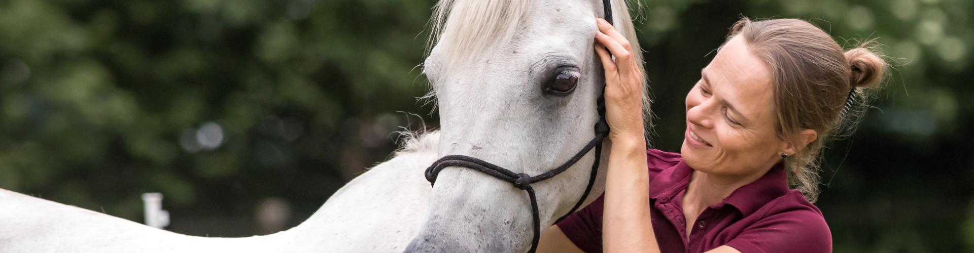 Paardenosteopaat Mariël behandelt witte arabische volbloed merrie
