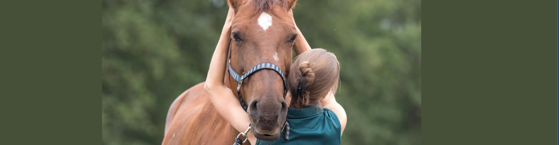 Osteopaat Mariël Schrijvers behandelt een paard cranio-sacraal
