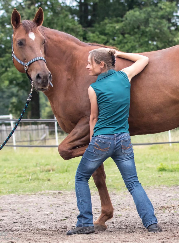 Foto van Mariël Schrijvers, osteopaat voor paarden, met voskleurig paard.