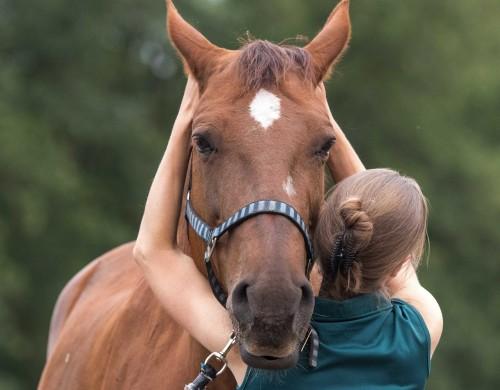 Osteopaat voor paarden Mariël Schrijvers behandeld de atlas van paard