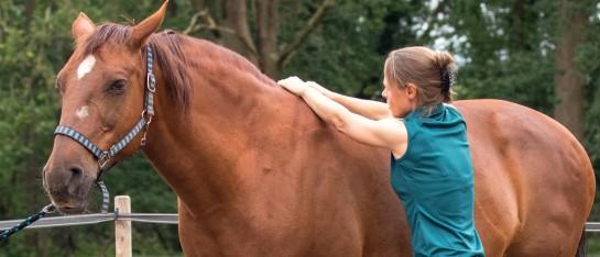 Mariël met voskleurig paard