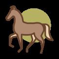 bruin paardje in stap