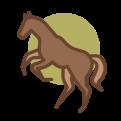 bruin paardje