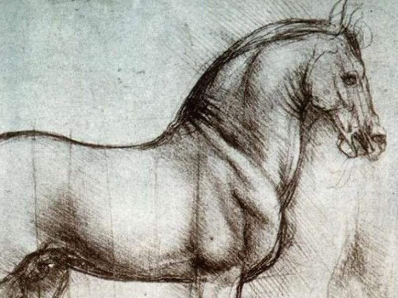 Paard Leonardo da Vinci als symbool voor paardenosteopathie
