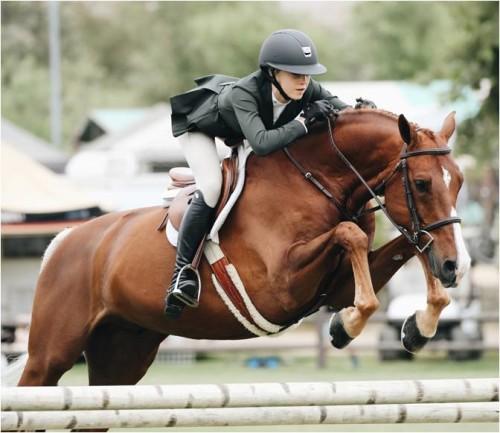 Amazone en bruin paard springend over hindernis
