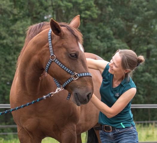 Osteopaat voor paarden Mariël Schrijvers met bruine merrie