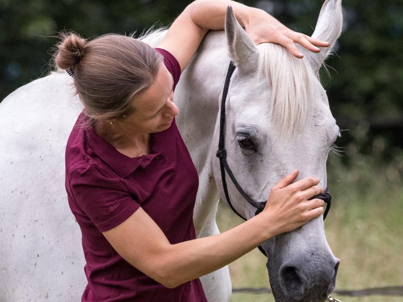 Osteopaat voor paarden Mariël Schrijvers test de flexie