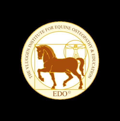 Logo van het Vluggen Instituut