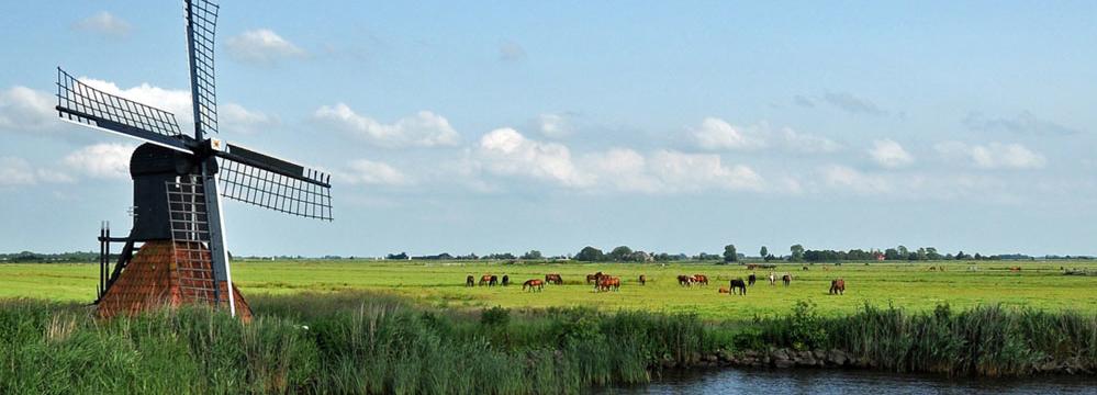 Parenclub Friesland