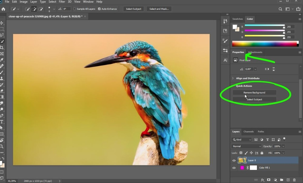 Achtergrond verwijderen in Photoshop via 'Remove Background' in Properties (eigenschappen)
