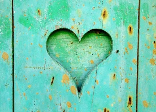 hart van hout