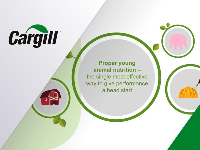 PowerPoint voorbeelden overzicht - Cargill
