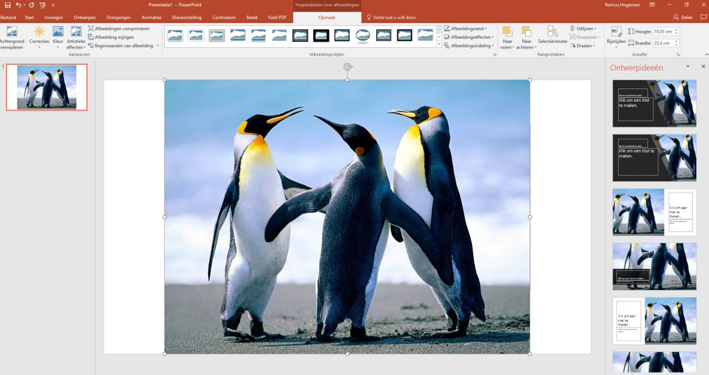 PowerPoint: Een afbeelding toevoegen aan je presentatie