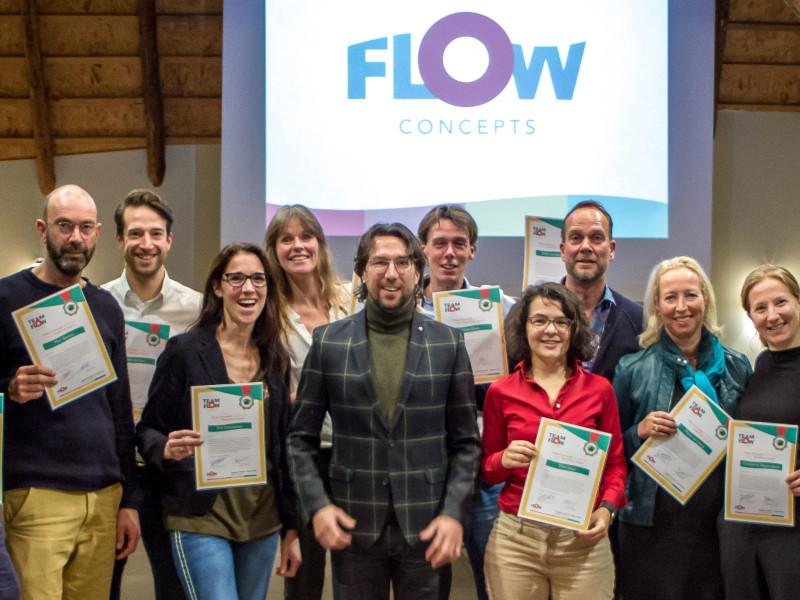 Hoe werkt teamflow?