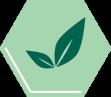 logo zonder achtergrond 350x190 1 1 1 1 1 1