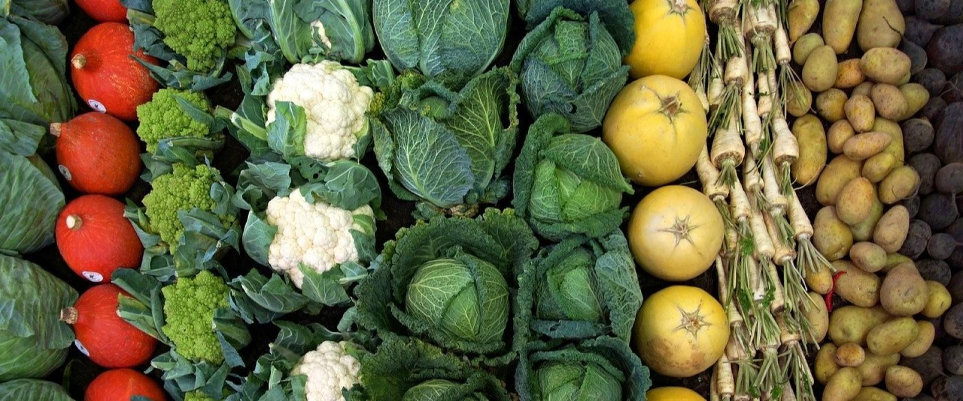 De invloed van je zuur/base balans op het zelf genezend vermogen