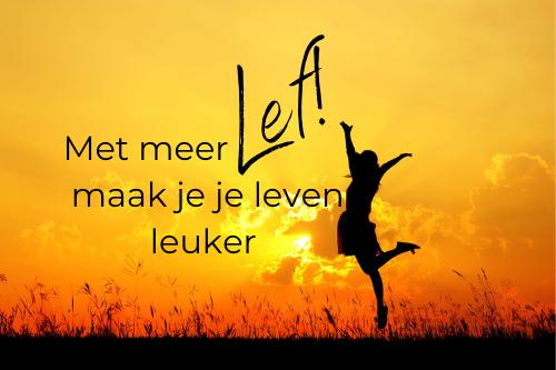 Online cursus Lef PREP Academie coach Anita Meeuwsen