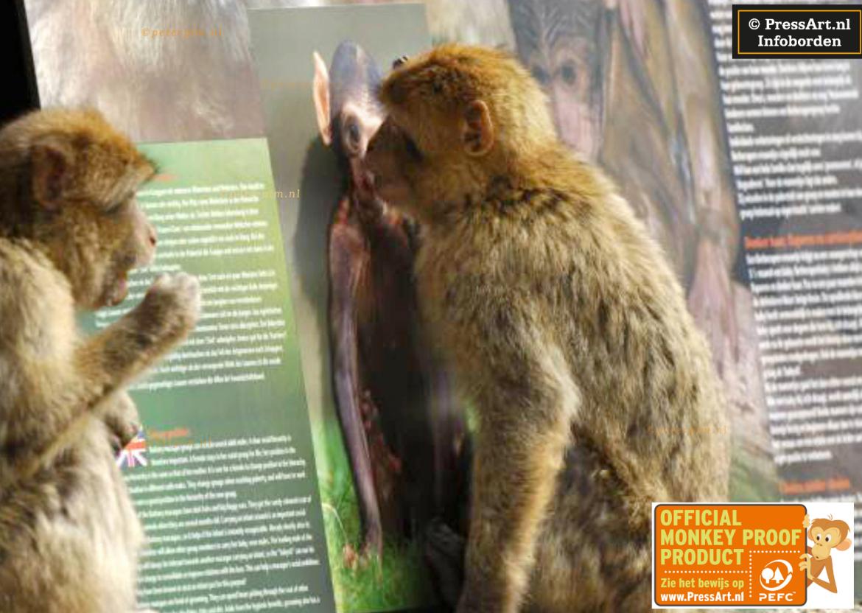 Monkeyproof infobord - Pressart infoborden en informatiepanelen