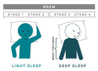 slaapcyclus diepe fase