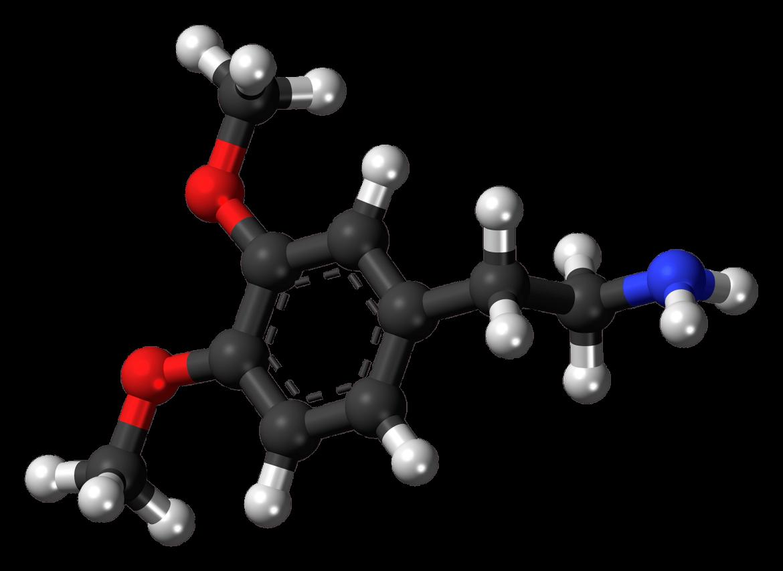dopamine werking functie fasting