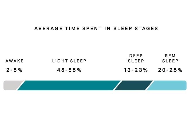 Slaapcyclus duur fases