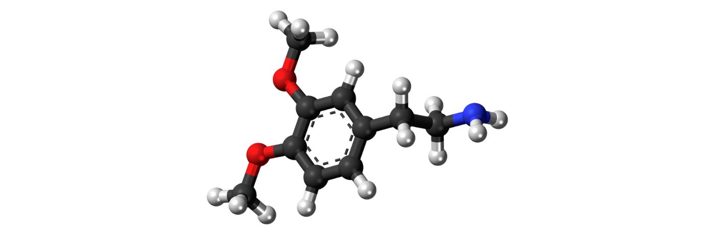 Wat is Dopamine? | Invloed op Productiviteit en Focus