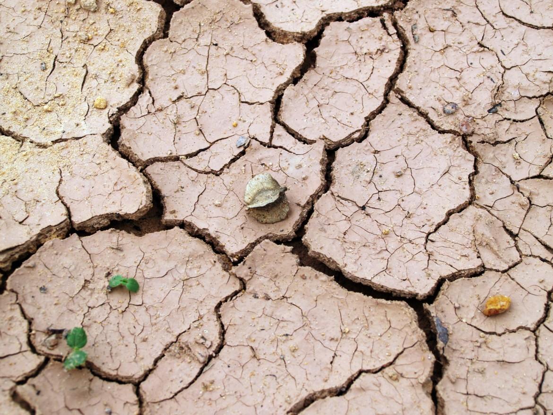 aarde, grond, droog, barsten, onvruchtbaar