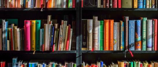 boeken, boekenkast, e-books, Albert Sonnevelt