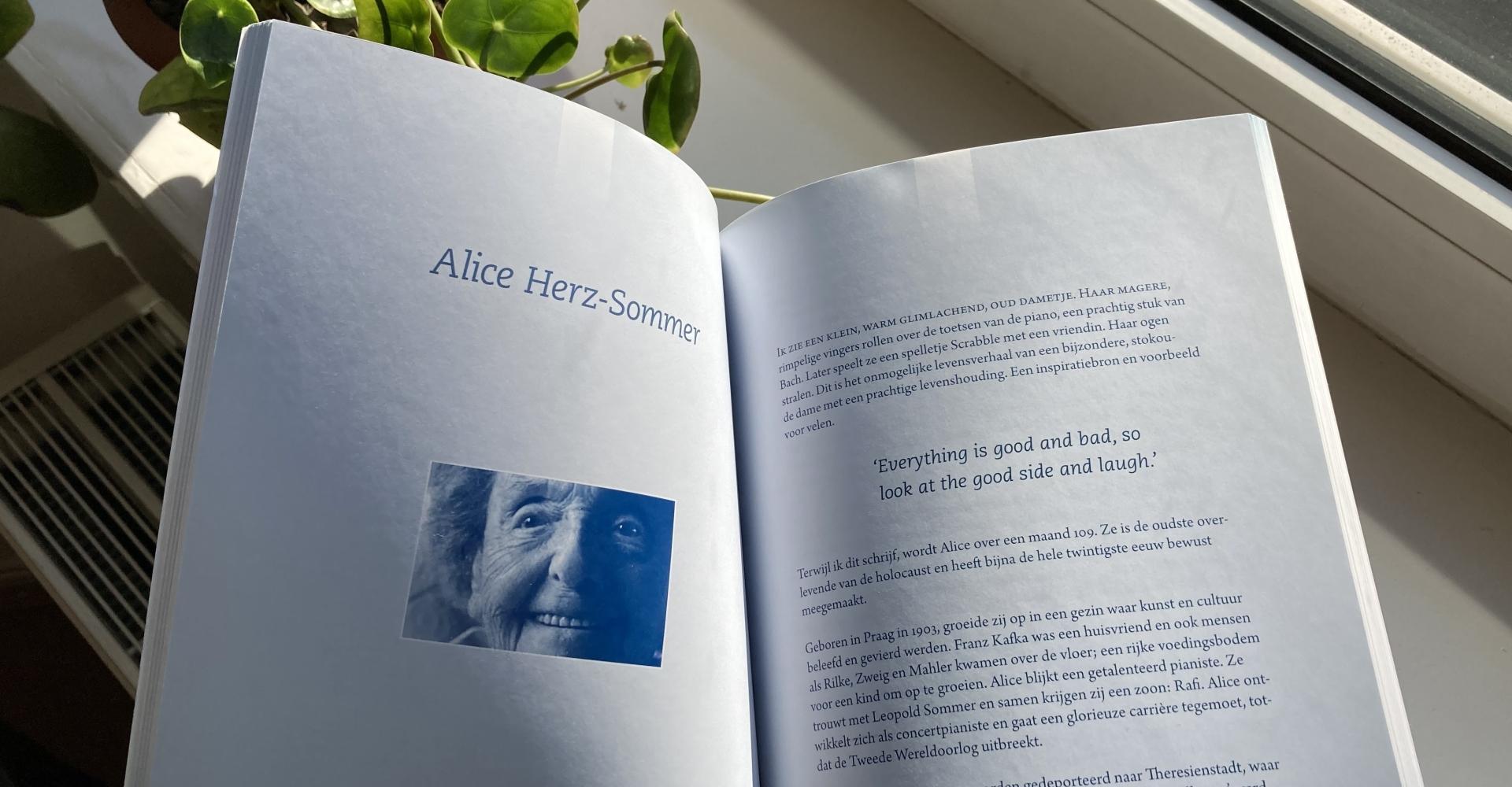 Inkijk, boek, Gelukt, Albert Sonnevelt